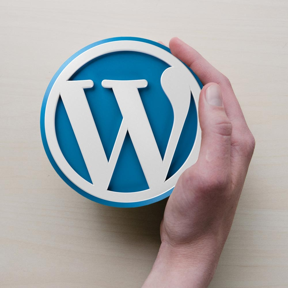 Wordpress logo in hands